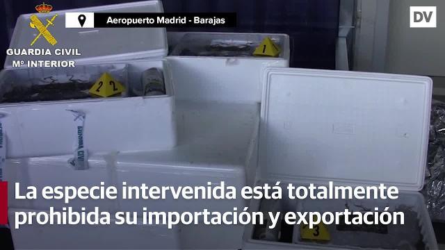 webcam aeropuerto barajas lugo