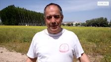 Cooperativas granadinas acaparan 1,5 millones de kilos de espárragos que no logran vender